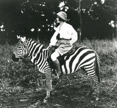 It works on so many levels. I  think any outfit can be recreated from thrift store finds, except, of course, for the zebra.