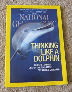 NATIONAL GEOGRAPHIC back ISSUE May 2015 Dolphins, taking back Detroit, Honeybees