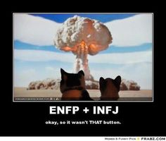 How the ENFP and INFJ attract to each other, having a lasting connection, are an explosion of insanity, Myers Briggs. Infj And Entp, Infj Mbti, Introvert, Enfp Compatibility, Infj Love, Psychology Memes, Enfp Personality, Enfp Relationships, Scorpio