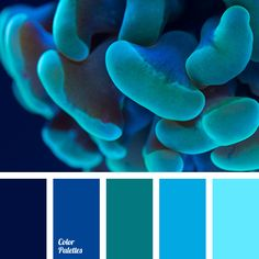 Color Palette  #1512