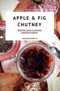 This Apple Fig chutney recipe has a tangy sweet flavour. It's an ideal accompaniment for a cheese plate or cold meats. It's also an impressive holiday gift item. This recipe for Apple & fig chutney also includes canning instructions! Fig Chutney Recipe, Apple Chutney, Chutney Recipes, Date Chutney, Fig Jam, Dried Figs, Jam And Jelly, Canning Recipes, Apple Recipes