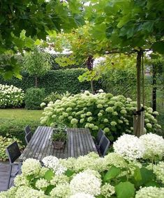 Garden design isn't only about earning your garden more attractive, but is also . Garden design isn't only about earning your garden more attractive, but is also essential in making it more functional. A little garden design differs. Diy Garden, Garden Planning, Outdoor Gardens, Garden Design Layout, Garden Decor, Small Garden Design, Shade Garden, Cottage Garden, Backyard Landscaping