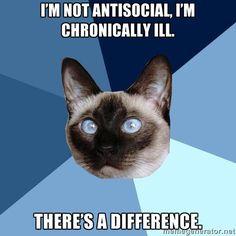 Chronic Illness Cat rheumatoid arthritis