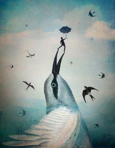 Jump! by Catrin Welz-Stein