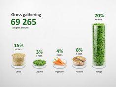 Infographic gross gathering Chart Illustration (data visualization) by  Anton Egorov