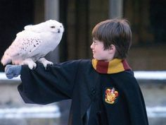 Four different owls played Hedwig, Harry's owl, in the movies.