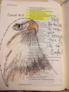 Isaiah 40:31. Fly like an eagle. nme