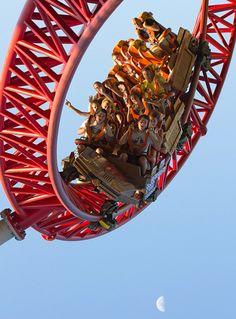 Maverick is a steel roller coaster built by Intamin at Cedar Point in Sandusky… Best Roller Coasters, Cool Coasters, Roller Coaster Ride, Best Amusement Parks, Amusement Park Rides, Abandoned Amusement Parks, Fair Rides, Planet Coaster, Places