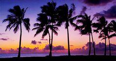 sunset, Hawaiian style.