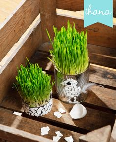 Ihana: Kylvön aika Classroom Projects, Easter Crafts For Kids, Earth Day, Spring Crafts, Happy Easter, Diy And Crafts, Projects To Try, Make It Yourself, Creative