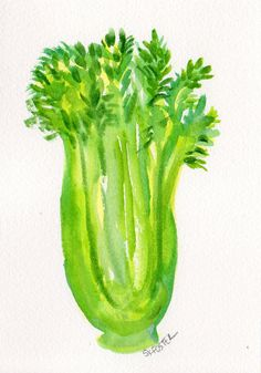 Celery Painting watercolor Vegetable Series 4 x by SharonFosterArt, $8.25