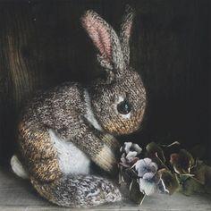 Mesmerizing Crochet an Amigurumi Rabbit Ideas. Lovely Crochet an Amigurumi Rabbit Ideas. Knitting Kits, Knitting Projects, Crochet Projects, Free Knitting, Animal Knitting Patterns, Double Knitting Patterns, Afghan Patterns, Knitting Stitches, Diy Projects