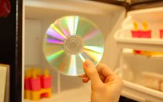 After She Puts Some CD's In The Freezer And When You See Why, You Will, Too! - http://www.wisediy.com/after-she-puts-some-cds-in-the-freezer-and-when-you-see-why-you-will-too/