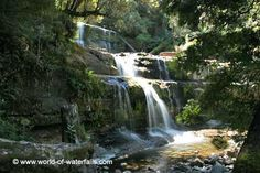 Liffey Falls was a series of four distinct waterfalls on the Liffey River where each of them had distinct characteristics as well as unique names. The individual falls were named. Great Western, Tasmania, Waterfalls, Wilderness, Westerns, Australia, River, World, Outdoor