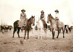 """early 1900: The Buckley sisters Mabel, May, and Myrtle were known throughout Montana as the """"Red Yearlings"""" because of their red-blond hair and horsemanship.  A number of Wild West shows tried to hire them, but they declined."""