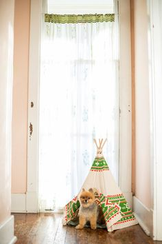 Adorable! https://www.etsy.com/listing/198439305/awesome-pet-teepee-small-greenorange