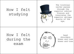 hahahaha pretty much happens for every test in nursing school!