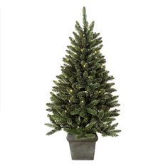 Frosted Frazer indoor/Outdoor Christmas Tree 3ft/4ft/5ft