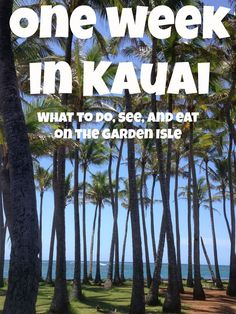 What to do, see and eat during a week in Kauai - no one can believe that we have NEVER been to Hawaii - going to change that soon - http://www.res99.com/hotel/deals/10028429/208/honolulu_hi_hotels.html?src_aid=A1555730