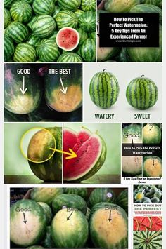 Watermelon Ripeness, Watermelon Benefits, Cut Watermelon, Healthy Juices, Healthy Tips, Healthy Recipes, Fruit Garden, Group Meals, Cute Food