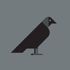 European Jackdaw vector illustration Marketing Logo, Jackdaw, Pet Birds, Paper Art, Harry Potter, Symbols, Graphic Design, Illustration, Papercraft