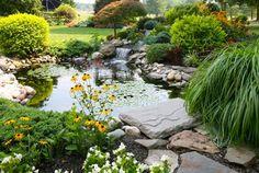 water garden design ideas | Water Garden--great along side a fire pit.