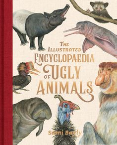 Booktopia has The Illustrated Encyclopaedia of Ugly Animals by Sami Bayly. Buy a discounted Hardcover of The Illustrated Encyclopaedia of Ugly Animals online from Australia's leading online bookstore. Ugly Animals, Unusual Animals, Animals For Kids, Curious Creatures, Weird Creatures, Goblin Shark, Blobfish, Sphinx Cat, Indie Books