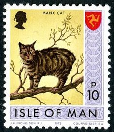 Isle of Man - Manx cat stamp Fancy Cats, Cute Cats, Manx Cat, Japanese Cat, Postage Stamp Art, Cat Cards, Fauna, Mail Art, Stamp Collecting