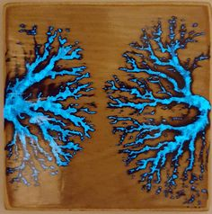 Imgur user PapJ06 created these interesting Lichtenberg figures by electrocuting wood blocks with a modified microwave transformer, then applying glowing powder and resin.