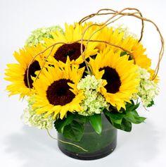 Sunny Sunflowers from Mockingbird Florist in Dallas, TX