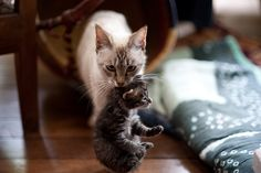 Mommy and baby