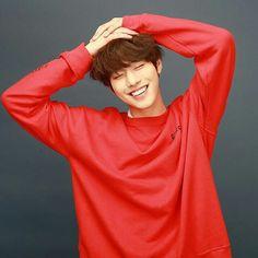 Novo amor dos K-dramas: Ahn Hyo Seop Korean Star, Korean Men, Asian Actors, Korean Actors, Korean Celebrities, Kim Min Suk, Jong Hyuk, Queen Of The Ring, Ahn Hyo Seop