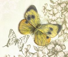 Hand Felted Brooch   Real Butterfly grey yellow by lannarfelt, $25.00