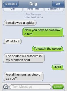 there was an old lady, swallowed a fly. i don't know why she swallowed a fly, perhaps she'll die :) I love txt from dog lol Funny Dog Texts, Funny Texts From Parents, Funny Texts Jokes, Text Jokes, Stupid Funny Memes, Funny Laugh, Haha Funny, Funny Stuff, Funny Shit