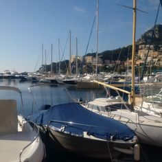 #Fontvieille #monaco #fontvielle #CapDAil #plagemala by mpen_mc from #Montecarlo #Monaco