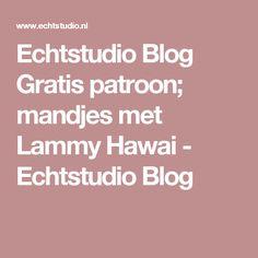 Echtstudio Blog Gratis patroon; mandjes met Lammy Hawai - Echtstudio Blog