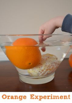 Orange science experiment for kids! Hands on way to explore density and buoyancy!