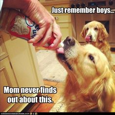 Our Little Secret....Just remember boys....Mom never finds out about this :-)
