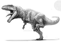 Giganotosaurus Carolinii: the biggest carnivore ever existed together with Spynosaurus, Acrocanthosaurus atokensis, Charcharadontosaurus Iguidensis, Tyrannosaurus Rex. Dinosaur Drawing, Dinosaur Art, Prehistoric World, Prehistoric Creatures, Jurassic Park World, Desenho Tattoo, Extinct Animals, Tyrannosaurus Rex, Creature Design