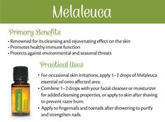 Melaleuca Essential Oil Uses