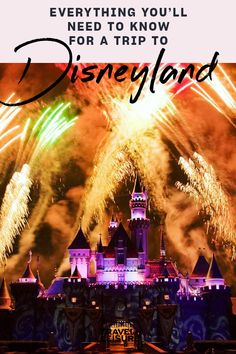 If you are planning a to the theme park in - here is everything you need to know about Disneyland Rides, Disneyland Secrets, Disneyland Resort, Best Family Vacations, Dream Vacations, Family Travel, Disney California Adventure Park, Disneyland California, Disney Facts
