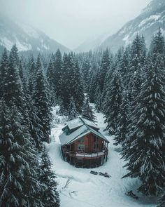 Winter Cabin, Cozy Cabin, Cabin Tent, Snow Cabin, Cabana, Wenatchee National Forest, Cabin In The Woods, Cabins In The Snow, Mountain Homes