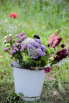 Best cutting flowers for the home garden