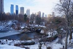Central Park, New York. 2017   gabrielaprias Central Park, New York, Outdoor, Outdoors, New York City, Outdoor Games, Nyc, The Great Outdoors