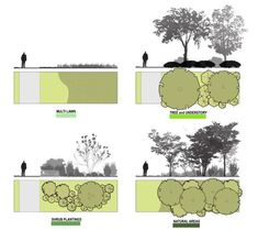 LANDSCAPE ARCHITECTURE: Photo
