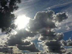 After the rain in Southern California.  I looked up and there it was.