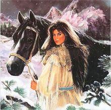 Diy diamant schilderen indian gilr home decoratieve pictures 5d diy volledige mozaïek schilderen steentjes diamant schilderen paard ambachten(China (Mainland))