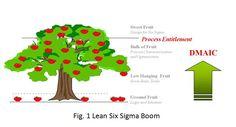 Lean Six Sigma Boom