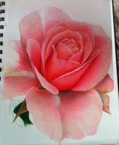 25 Beautiful and Stunning Flower Drawings from around the world Beautiful Flower Drawings, Amazing Drawings, Watercolor Projects, Watercolour Tutorials, Watercolor Flowers, Watercolor Art, Painting Flowers, Love Flowers, Beautiful Flowers