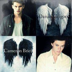My angels - Sabeth Fallen Lauren Kate Movie, Cameron Briel, Harrison Gilbertson, Jeremy Irvine, Fallen Series, Beautiful Disaster, Vampire Academy, Series Movies, Hush Hush